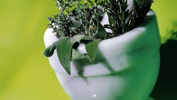 רפואה בצמחי מרפא מתייחסת לשימוש בזרעי צמחים, פירות יער, שורשים, עלים, קליפות עצים או פרחים למטרות רפואיות. יש להם מסורת ארוכה של שימוש מחוץ לרפואה קונבנציונלית, כדרך לטיפול ומניעת מחלות.
